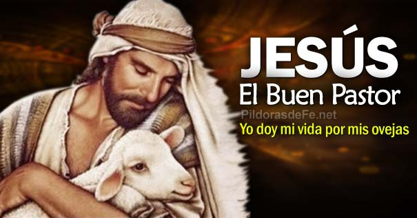 Lectio Divina 4to Domingo de Pascua «B»