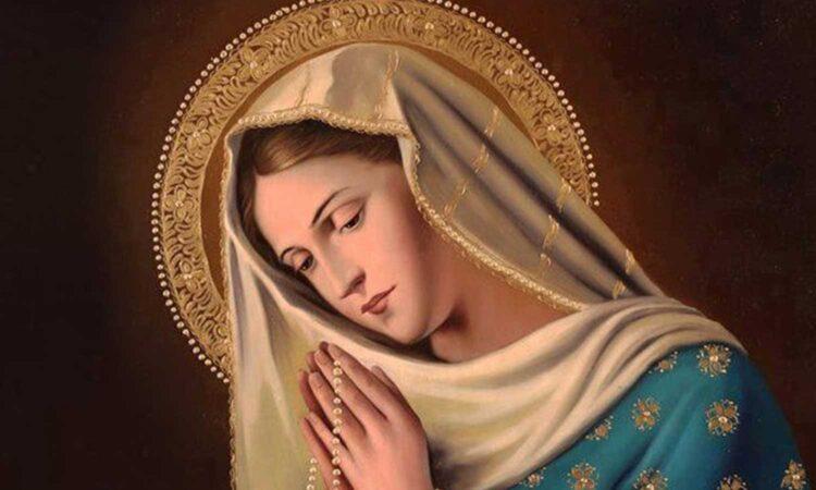 María es la luz del camino para encontrarnos con Jesús